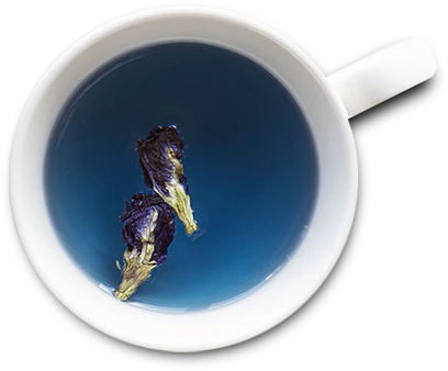 butterfly-tea.png